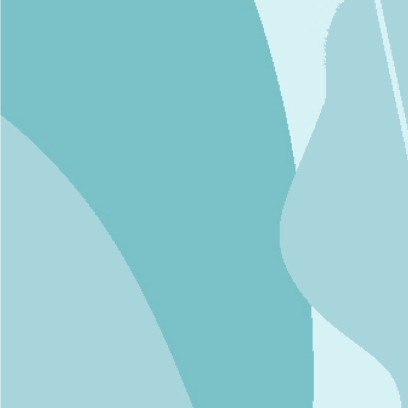 Menopause Symptom Questionnaire
