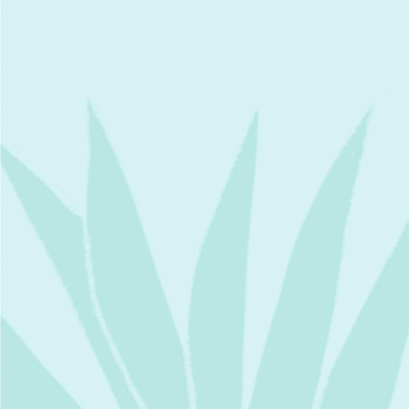 Gransnet & the Menopause – Cari Rosen & Dr Louise Newson